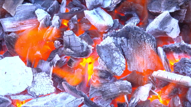 vídeos de stock e filmes b-roll de fire flame burning charcoal for barbecue cooking food - inflamável