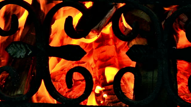 Fire flame close up Burning Wood In The Fireplace, fire starts to burn in a fireplace blacksmith shop stock videos & royalty-free footage