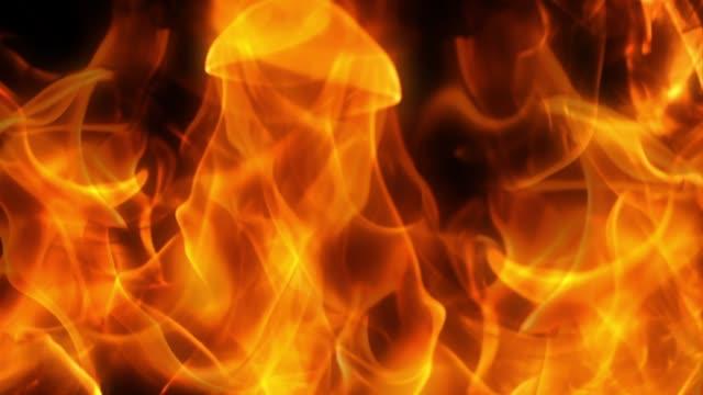 brand flamma loop animation bakgrund - värmepump bildbanksvideor och videomaterial från bakom kulisserna