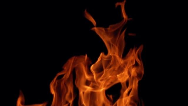 vídeos de stock e filmes b-roll de fire flames on black background - inflamável