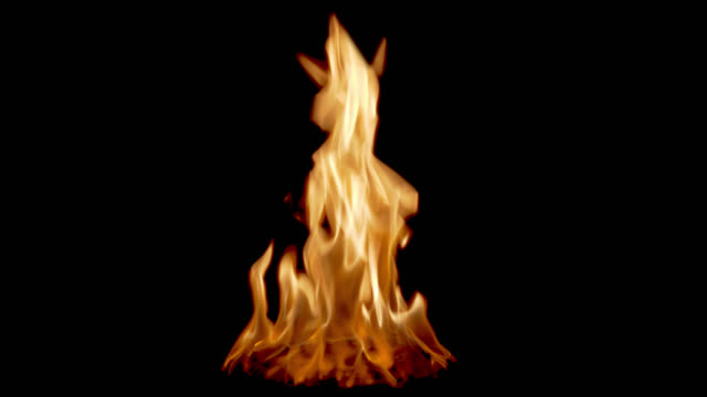 vídeos de stock, filmes e b-roll de chamas de fogo - fogo