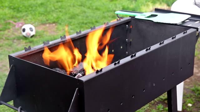 fire flare in barbecue - skog brand bildbanksvideor och videomaterial från bakom kulisserna