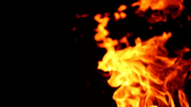 vídeos de stock e filmes b-roll de fire in nature. bokeh from the fire. - meat texture