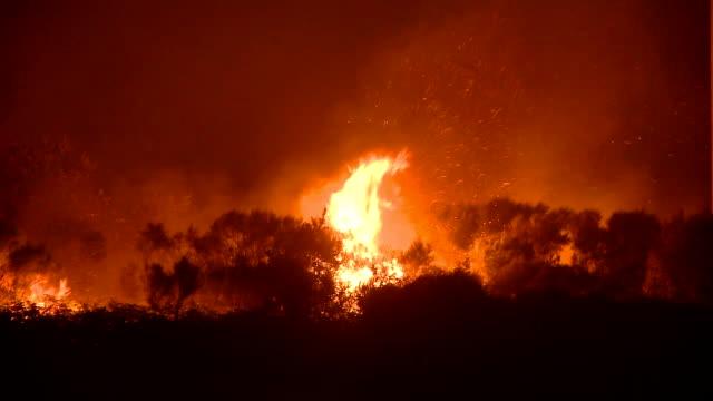 incendi nei boschi notte - incendio video stock e b–roll