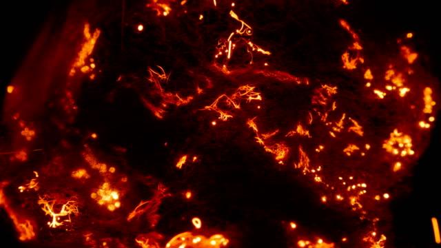 yayılır hızla ile çelik yün, sparks bir sürü ateş - kıvılcım stok videoları ve detay görüntü çekimi
