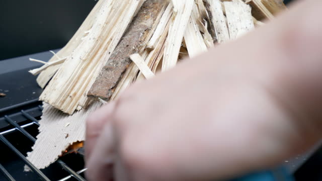 Fire up the wood for barbeque. video