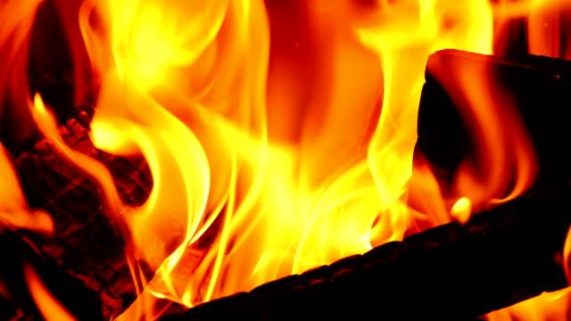 vídeos y material grabado en eventos de stock de fuego con troncos de madera en llamas en una fogata cerca de vídeo en 4k. clip a cámara lenta a media velocidad. - diseño natural