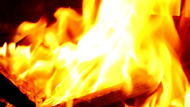 vídeos y material grabado en eventos de stock de fuego con troncos de madera en llamas en una fogata de cerca de vídeo en 4k - diseño natural