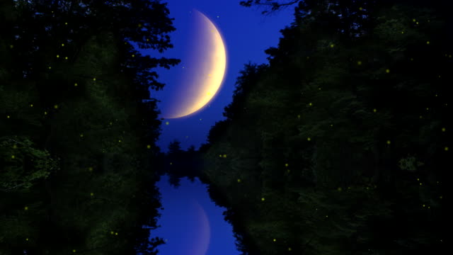 Fireflies over a moonlit lake