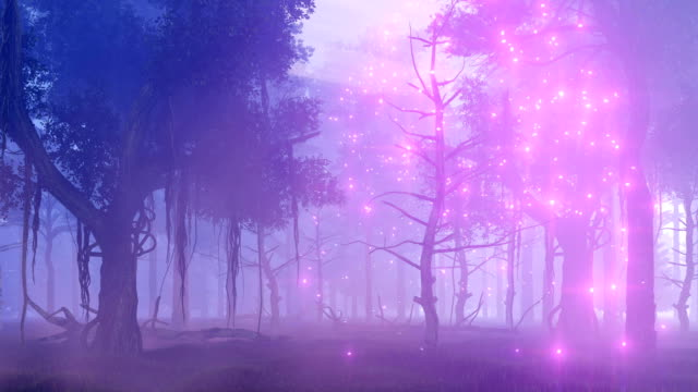 Firefly lights in magical misty forest at night video