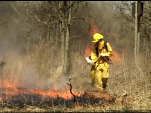 Firemen Spray Forest Fire 1