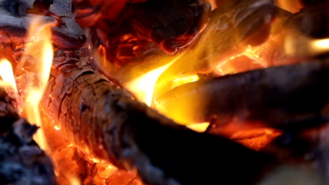 Fireplace burning wood slow motion background Fireplace burning wood slow motion background coonhound stock videos & royalty-free footage
