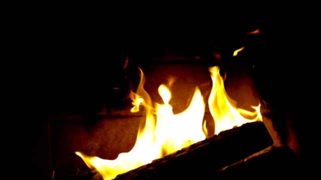 fireplace logs burning video