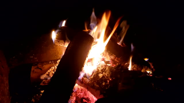 Firewood in the dancing flame video