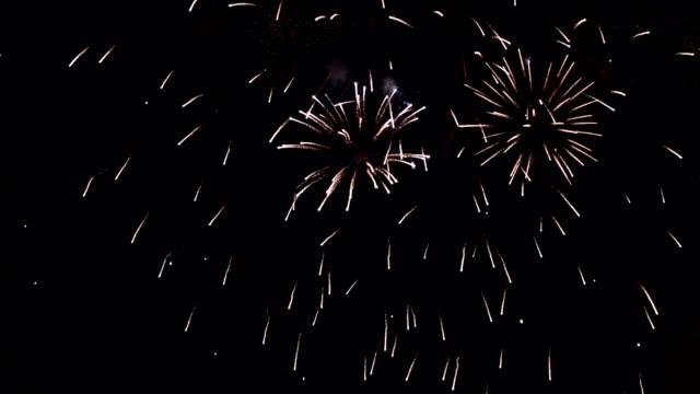 Firework Blooming video