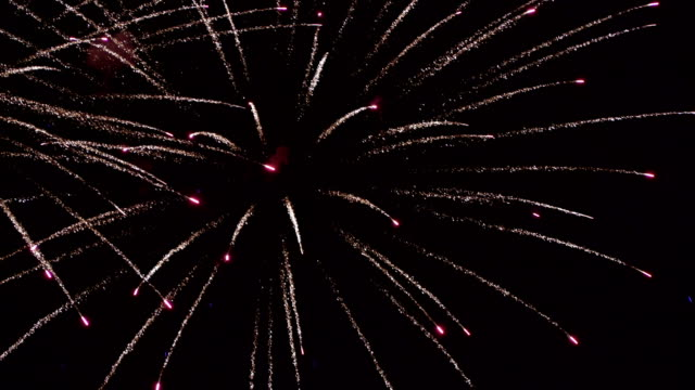 Firework - concept of finale of any holiday: Chinese new year, New year, Christmas, wedding, birthday, Valentines day, Thanksgiving, independence day and Brazilian carnival video