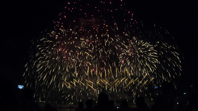 Firework display for festival, anniversary , celebration , party, new year on black background video
