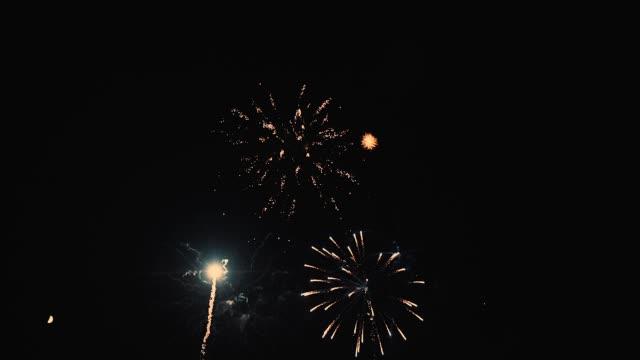 花火の展示 ビデオ