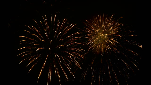 Firework display with sound - video