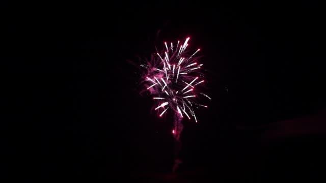 Vuurwerk element op zwarte achtergrond. video