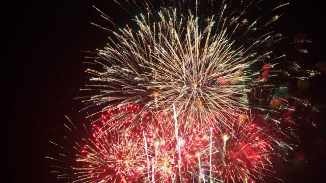 Firework Firework fourth of july videos stock videos & royalty-free footage