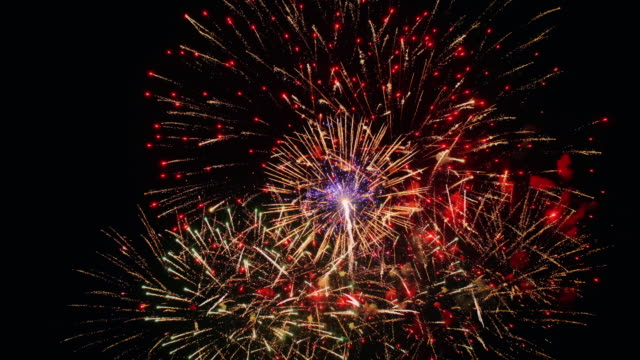 firework - giorno dell'indipendenza video stock e b–roll