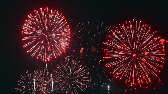 firework - 4 luglio video stock e b–roll