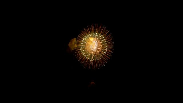Fuochi d'artificio sul cielo notturno - video