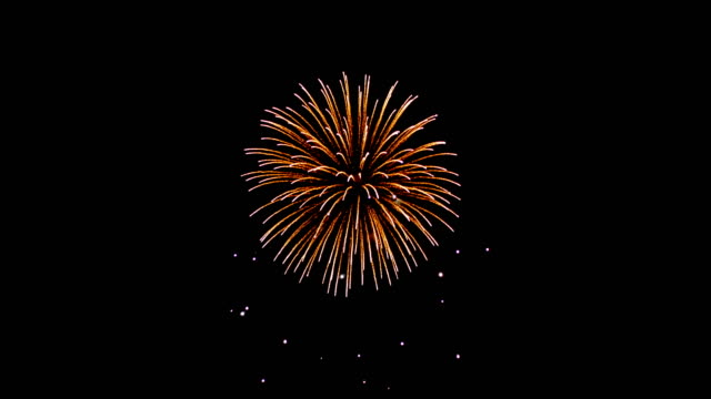fireworks set light up to night sky Beautiful fireworks up to sky on night with black backgrounds happy 4th of july videos stock videos & royalty-free footage