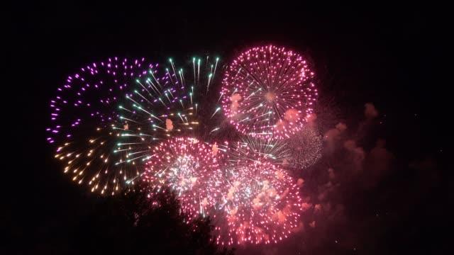 fireworks - un singolo oggetto video stock e b–roll