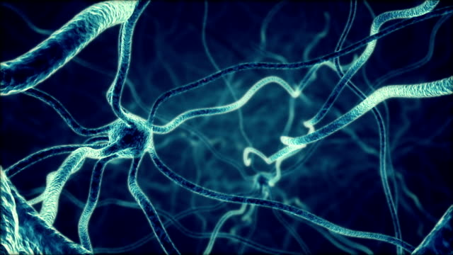 Firing Neurons video