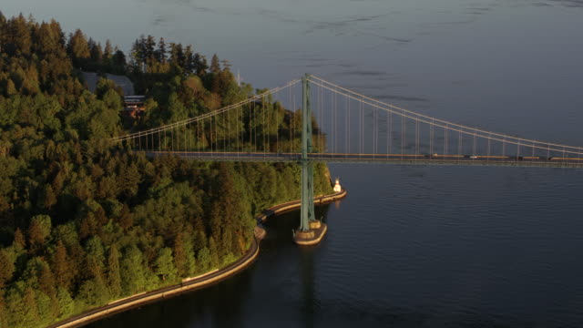 AERIAL First Narrows Bridge at Stanley Park in morning light Aerial shot of the First Narrows Bridge or Lions Gate Bridge from Stanley park in the morning sun. Shot in Canada. vancouver canada stock videos & royalty-free footage