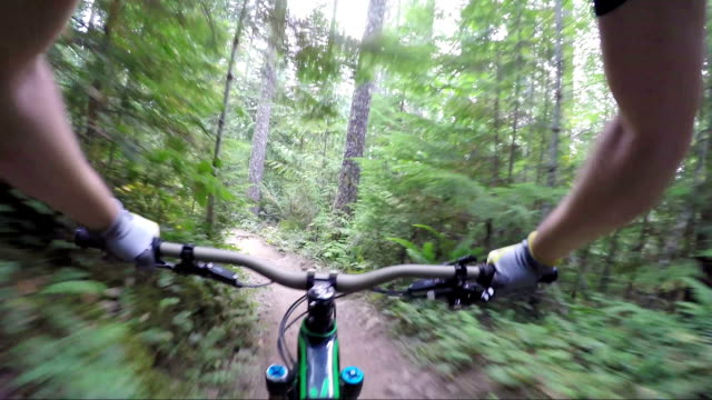 stockvideo's en b-roll-footage met first person perspectief enduro mountainbiken - boomstam