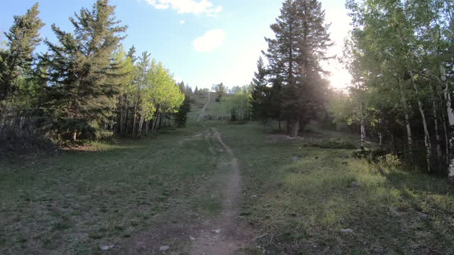 stockvideo's en b-roll-footage met first person perspective from mountain biker following trail - minder dan 10 seconden