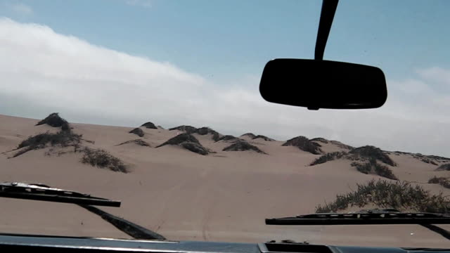 first person view drive first person view on dunes of Sandwich Harbour, Walvis Bay, It's a part of the Namib Naukluft Park Namibia. Wild and remote area accessible only by off-road cars. animal skeleton stock videos & royalty-free footage