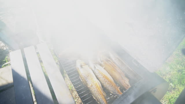 Fish cooking in smokehouse. Three sardines and sea bass. Fish cooking in smokehouse. Three sardines and sea bass. smokehouse stock videos & royalty-free footage