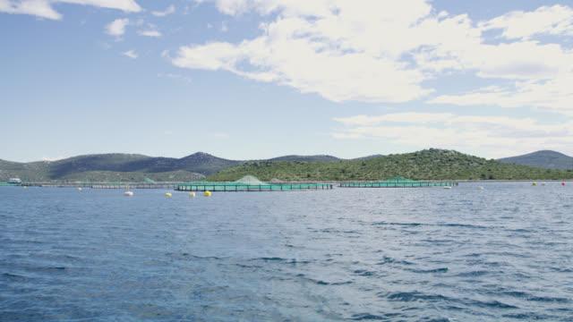 WS Fish farm video