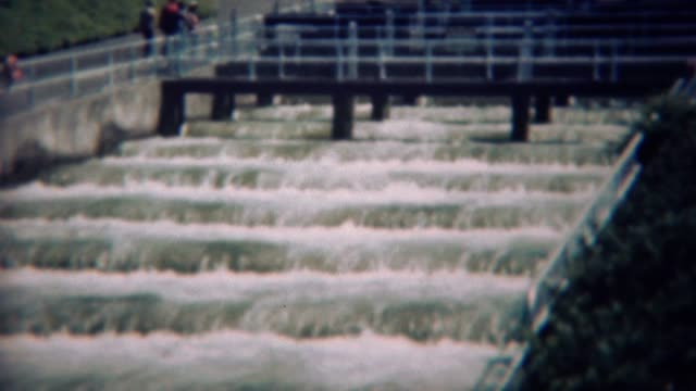 1959: Fish farming counting center waterfall salmon ladder.