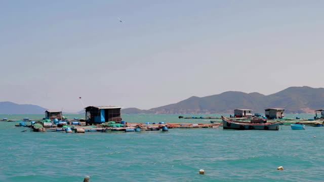 Fish farms in Vietnam Nha Trang city video