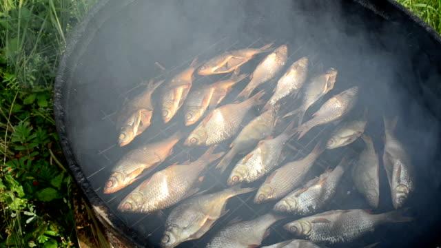 fish smoking smoke rise video