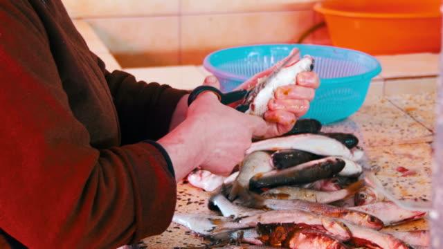 市場の屋台で魚をスケーリング魚ベンダー - ローフード点の映像素材/bロール