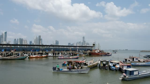 Fisher boats and fishermen at harbor near fish market and Skyline of Panama City Fisher boats and fishermen at harbor near fish market and Skyline of Panama City pelican stock videos & royalty-free footage