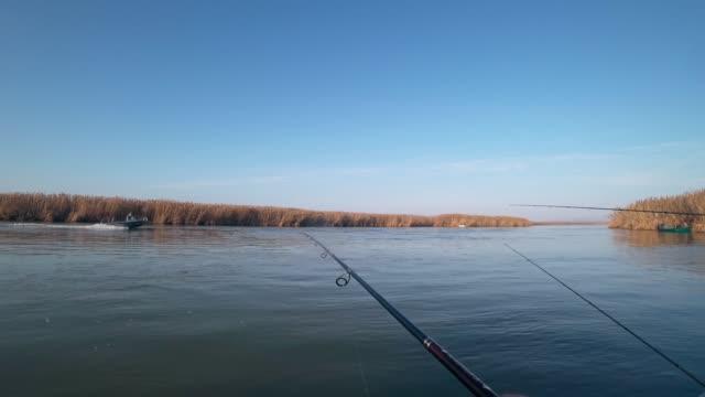 balıkçı bir nehir üzerinde dönen bir teknede yırtıcı balık yakalar, ilk kişi görünümü - i̇htiyoloji stok videoları ve detay görüntü çekimi