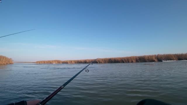 bir balıkçı nehirde dönen bir teknede yırtıcı balık yakalar, ilk kişi görünümü - i̇htiyoloji stok videoları ve detay görüntü çekimi