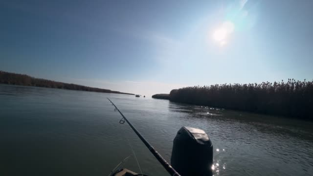 vídeos de stock e filmes b-roll de fisherman fishing on a spinning rod on a beautiful river in sunny weather, first person view - fishman