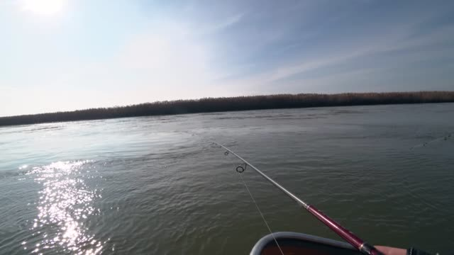 vídeos de stock e filmes b-roll de fisherman fishing on a spinning rod on a beautiful river in sunny weather - fishman