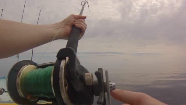 pov fisherman fishing - żabnicokształtne filmów i materiałów b-roll