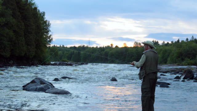 Fisherman Fly Fishing in River at Sunrise video
