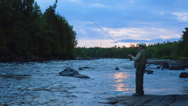 fisherman fly fishing in river at sunrise - fishing video stock e b–roll