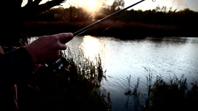 stockvideo's en b-roll-footage met visser handen met rod, bos, rivier op de achtergrond. visserij-reel zichtbaar. setup voor een vreedzame vangst van loopgraaf, crucian, bremes of andere vissen. selectieve aandacht - carp